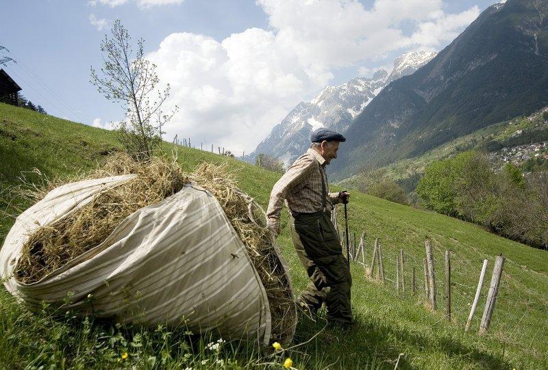 Fotos aus den kategorien berge landschaft pflanzen